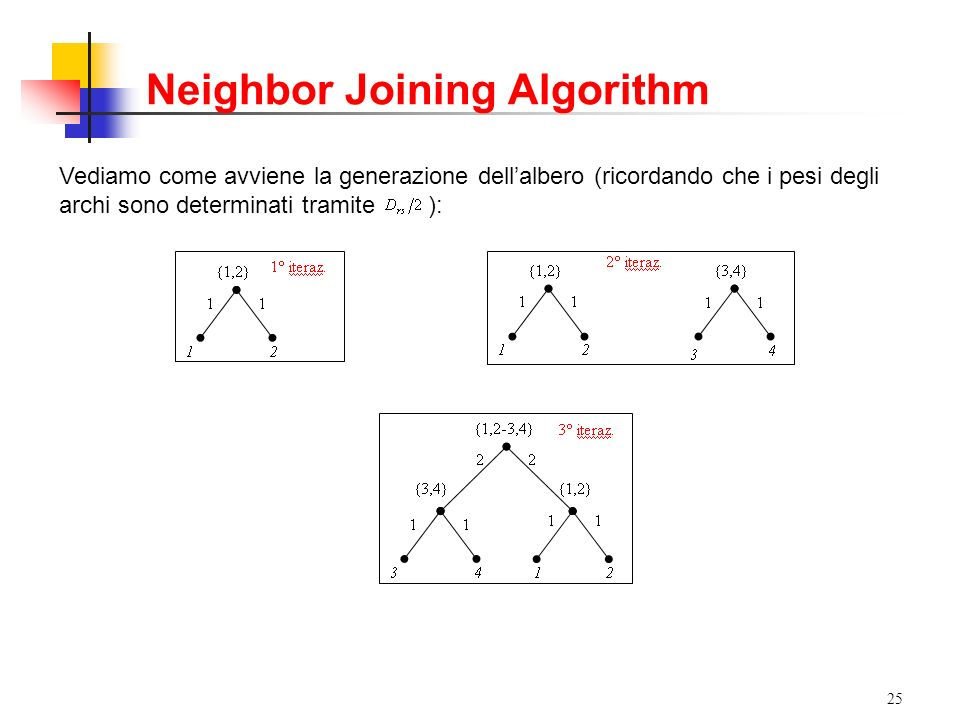 Neighbor Joining Algorithm