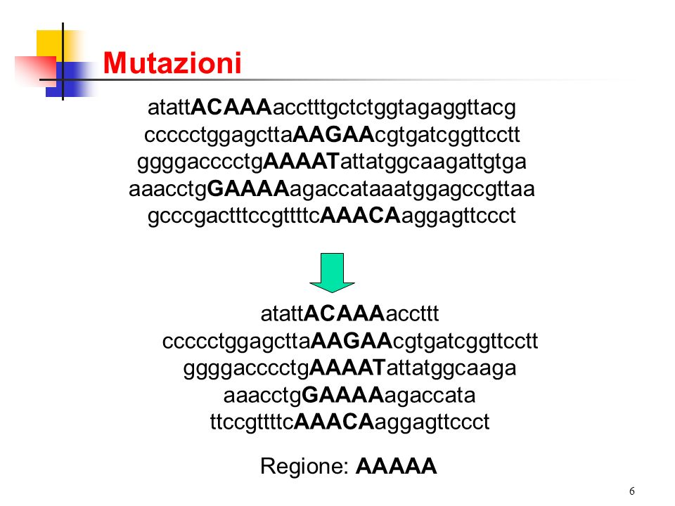 Mutazioni atattACAAAacctttgctctggtagaggttacg
