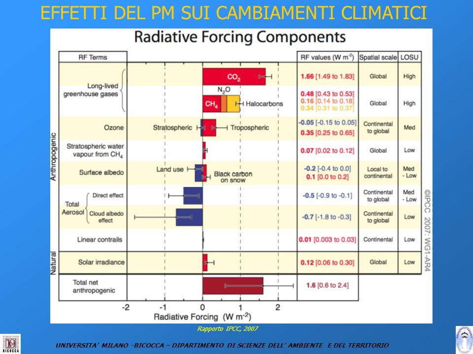 EFFETTI DEL PM SUI CAMBIAMENTI CLIMATICI