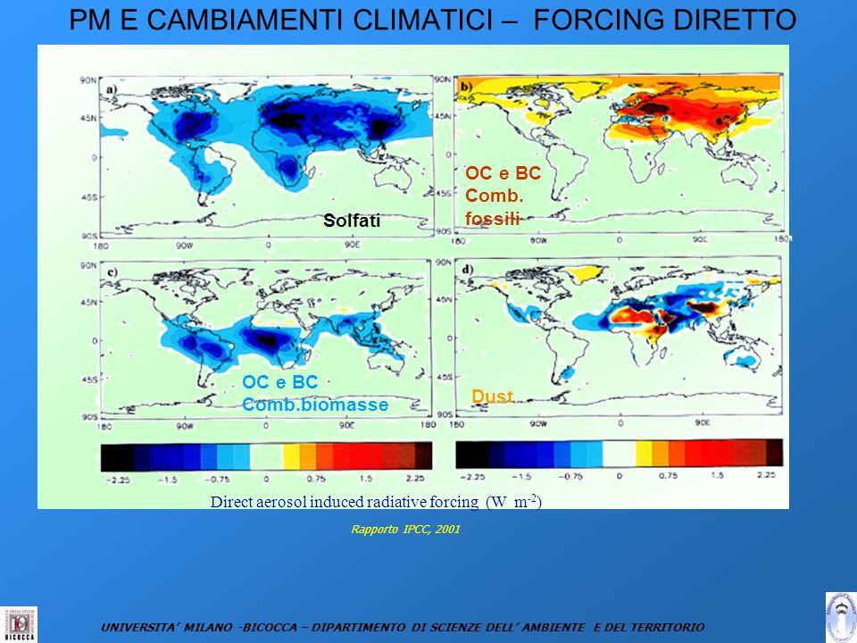 PM E CAMBIAMENTI CLIMATICI – FORCING DIRETTO