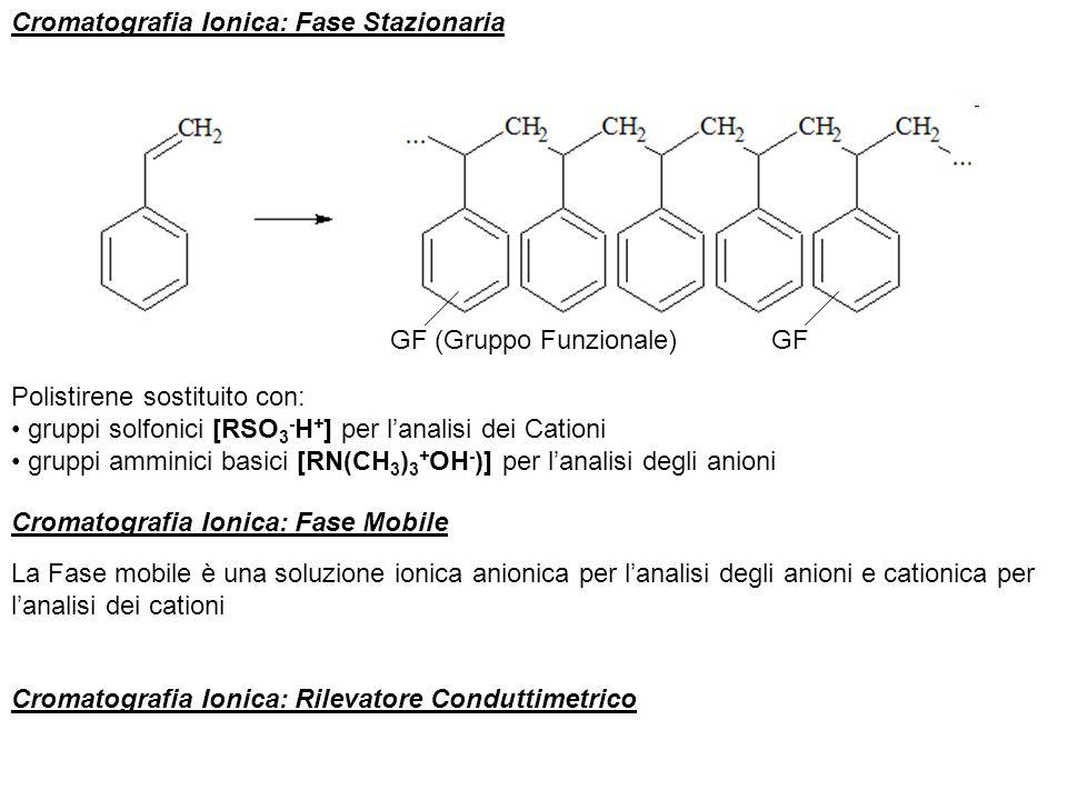 Cromatografia Ionica: Fase Stazionaria