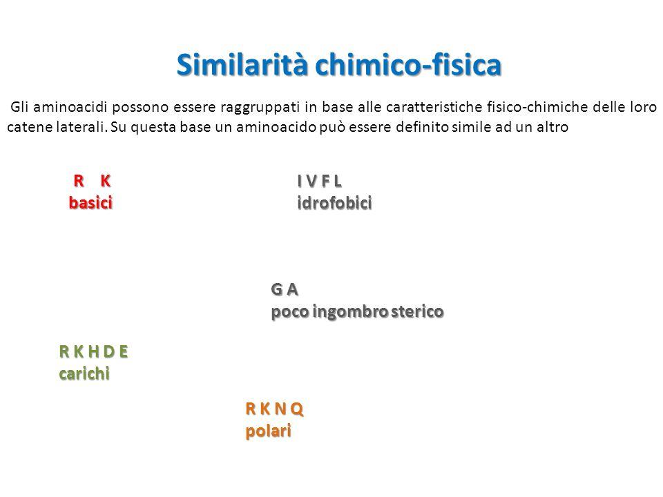 Similarità chimico-fisica