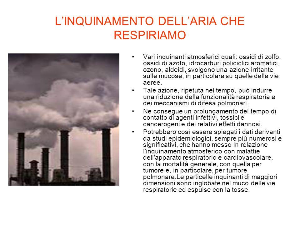 L'INQUINAMENTO DELL'ARIA CHE RESPIRIAMO