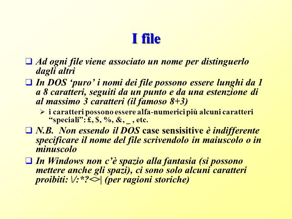 I file Ad ogni file viene associato un nome per distinguerlo dagli altri.