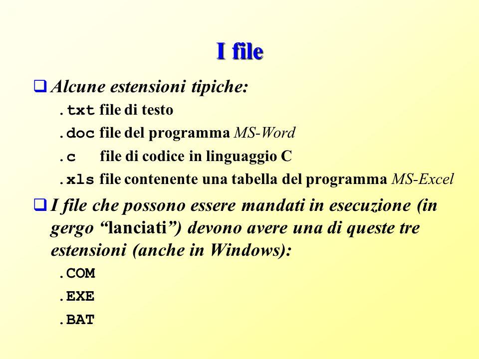 I file Alcune estensioni tipiche:
