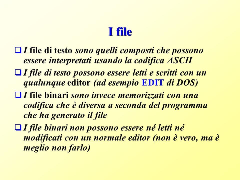 I file I file di testo sono quelli composti che possono essere interpretati usando la codifica ASCII.