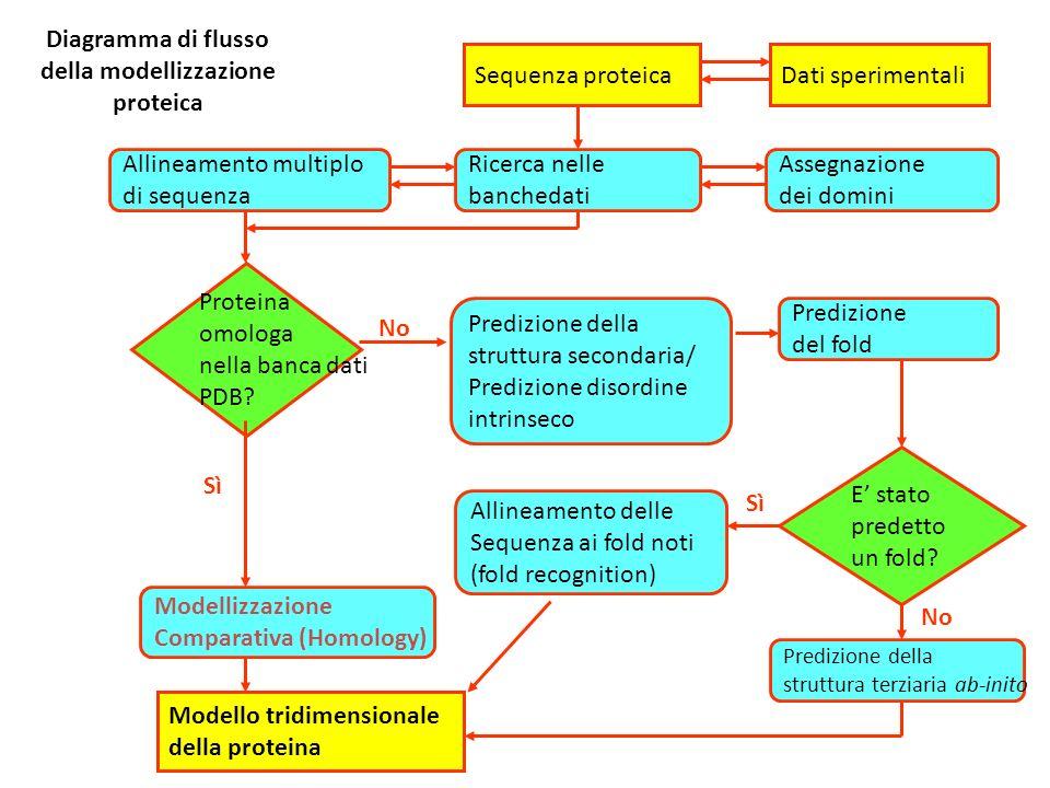 Diagramma di flusso della modellizzazione proteica