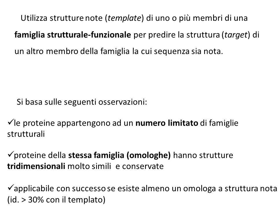 Utilizza strutture note (template) di uno o più membri di una famiglia strutturale-funzionale per predire la struttura (target) di un altro membro della famiglia la cui sequenza sia nota.