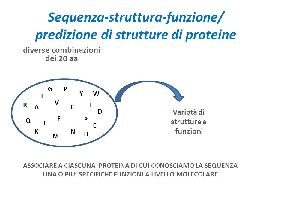 Sequenza-struttura-funzione/ predizione di strutture di proteine