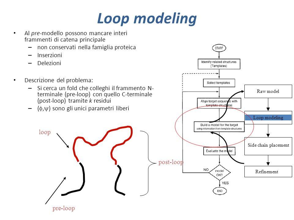 Loop modeling Al pre-modello possono mancare interi frammenti di catena principale. non conservati nella famiglia proteica.