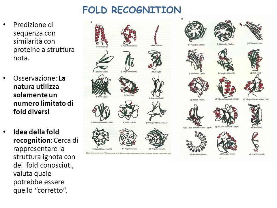 FOLD RECOGNITION Predizione di sequenza con similarità con proteine a struttura nota.