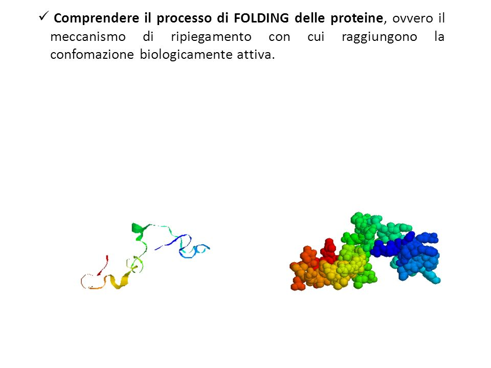 Comprendere il processo di FOLDING delle proteine, ovvero il meccanismo di ripiegamento con cui raggiungono la confomazione biologicamente attiva.