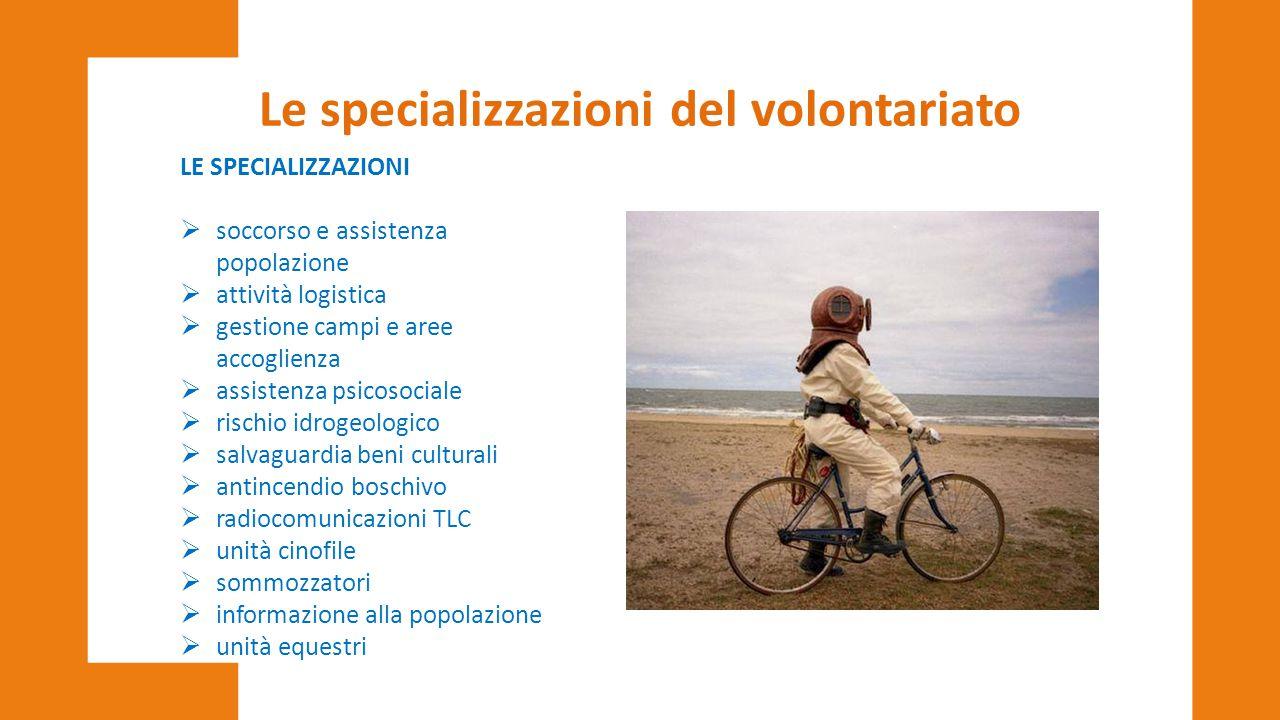 Le specializzazioni del volontariato
