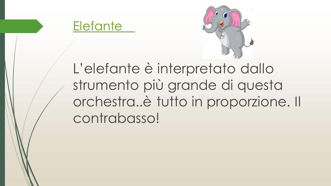 Elefante L'elefante è interpretato dallo strumento più grande di questa orchestra..è tutto in proporzione.