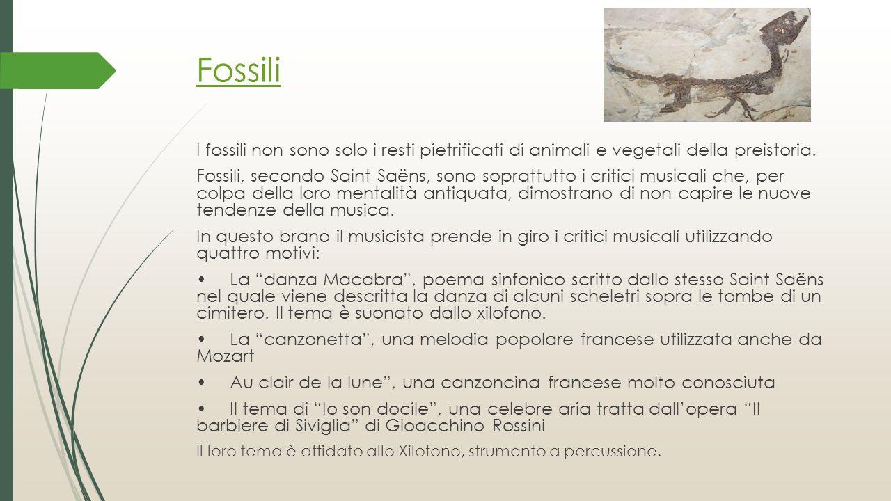Fossili I fossili non sono solo i resti pietrificati di animali e vegetali della preistoria.