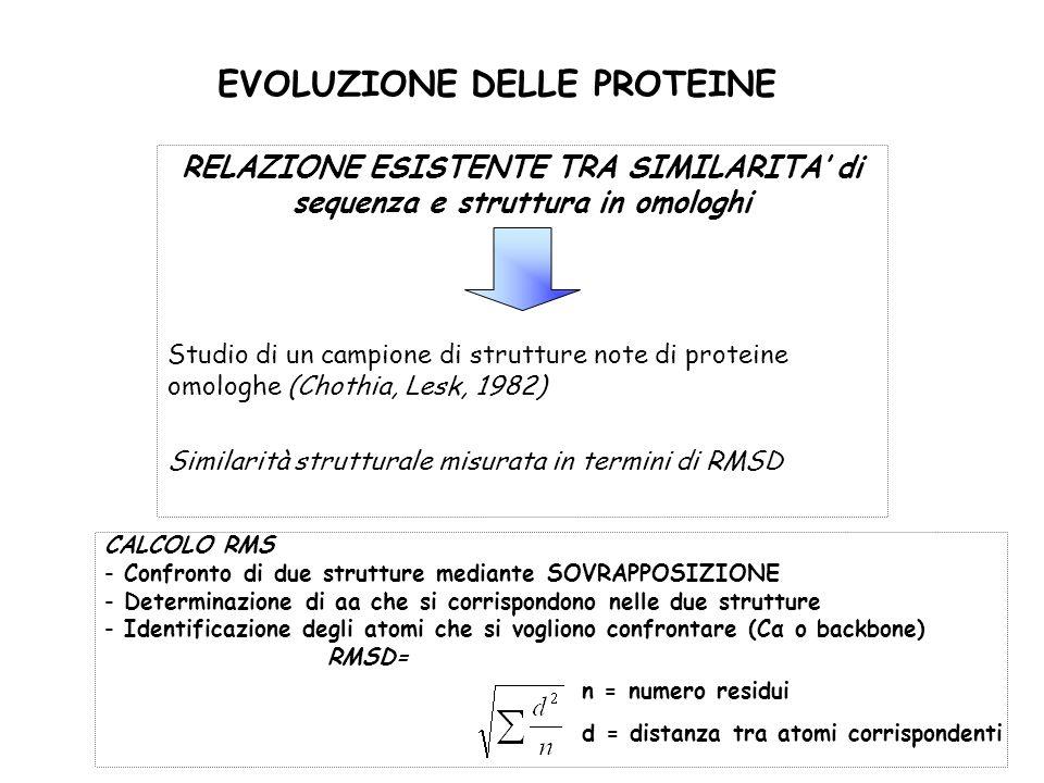 EVOLUZIONE DELLE PROTEINE