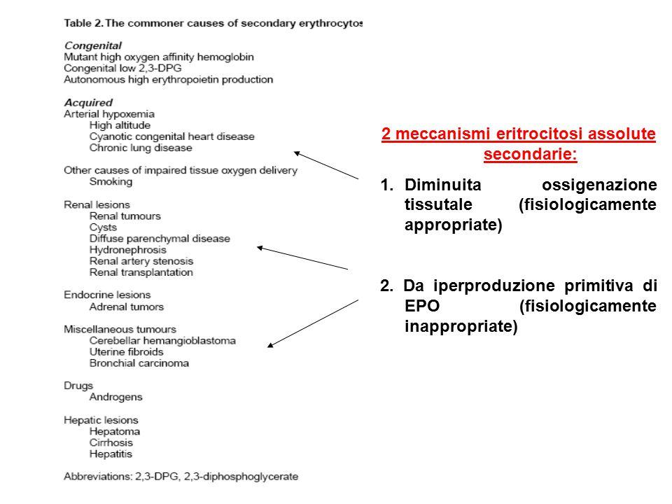 2 meccanismi eritrocitosi assolute secondarie: