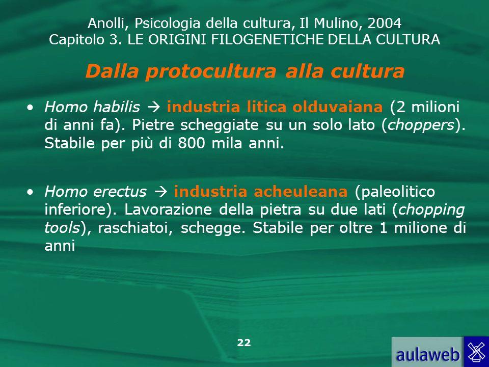 Dalla protocultura alla cultura
