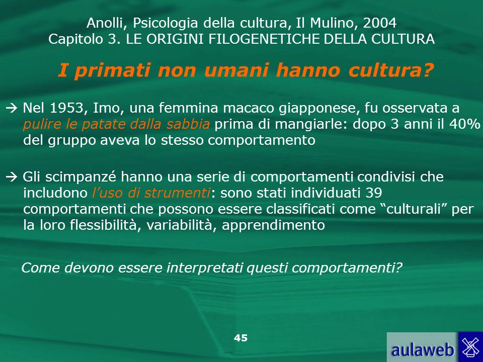 I primati non umani hanno cultura