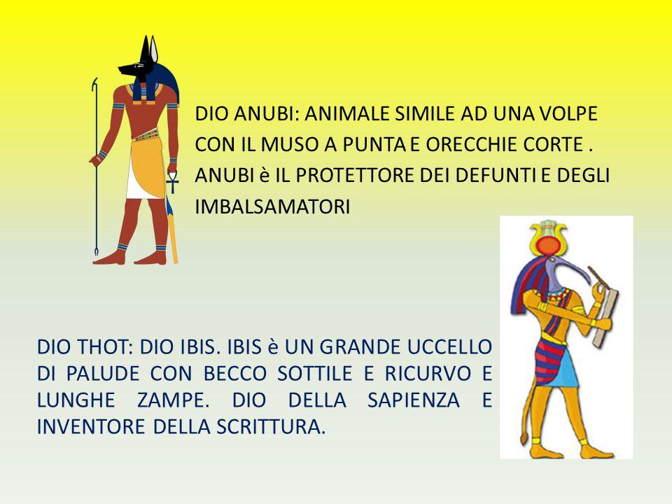 DIO ANUBI: ANIMALE SIMILE AD UNA VOLPE CON IL MUSO A PUNTA E ORECCHIE CORTE . ANUBI è IL PROTETTORE DEI DEFUNTI E DEGLI IMBALSAMATORI