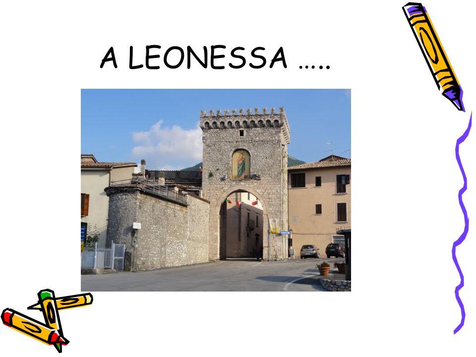 A LEONESSA …..