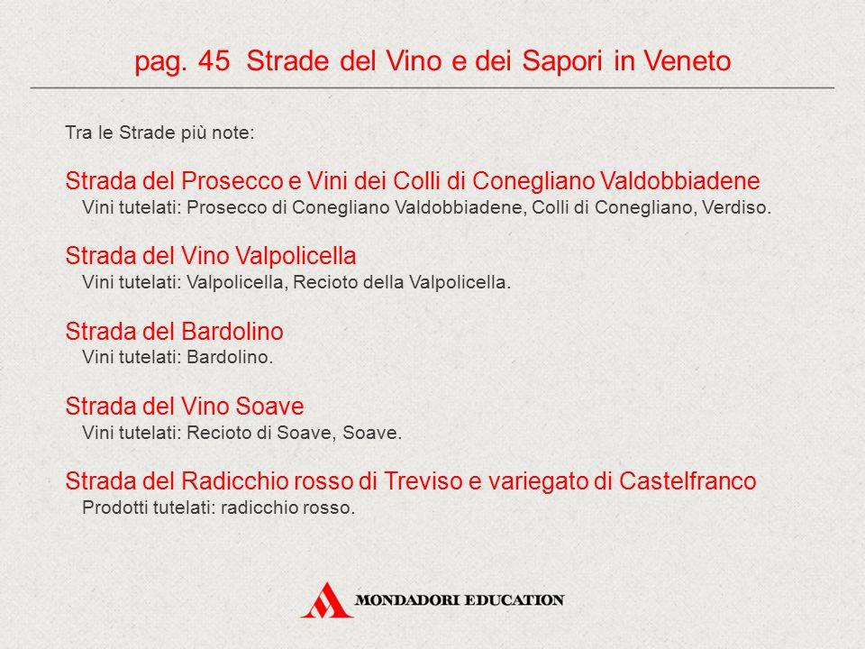 pag. 45 Strade del Vino e dei Sapori in Veneto