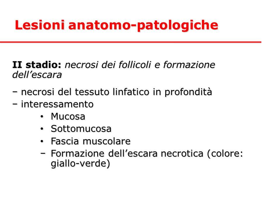 Lesioni anatomo-patologiche
