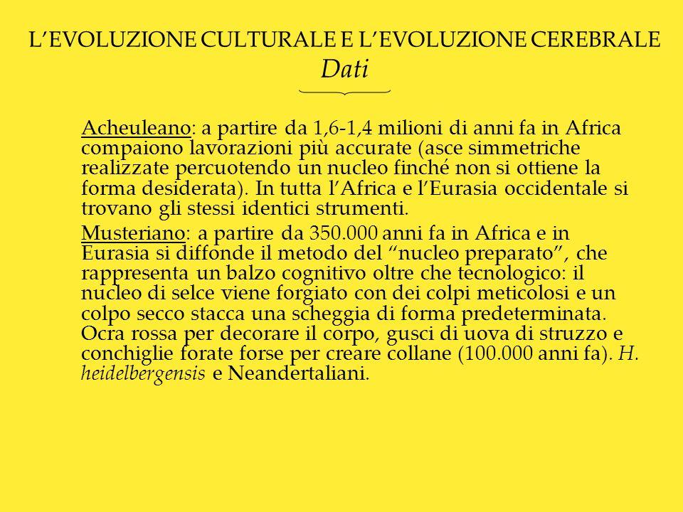 L'EVOLUZIONE CULTURALE E L'EVOLUZIONE CEREBRALE Dati