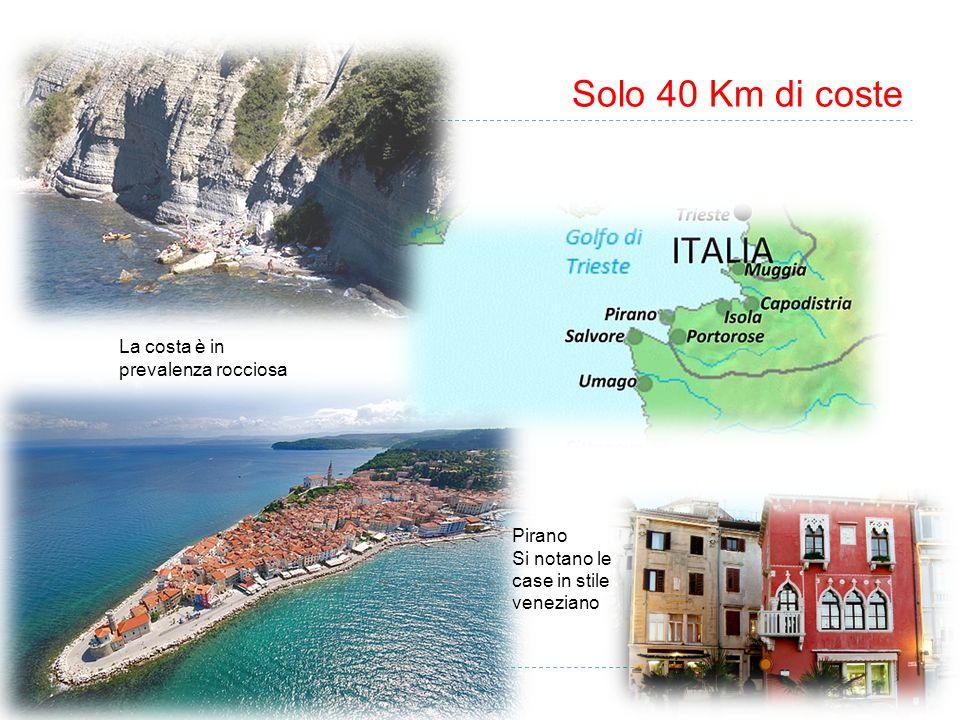 Solo 40 Km di coste La costa è in prevalenza rocciosa Pirano