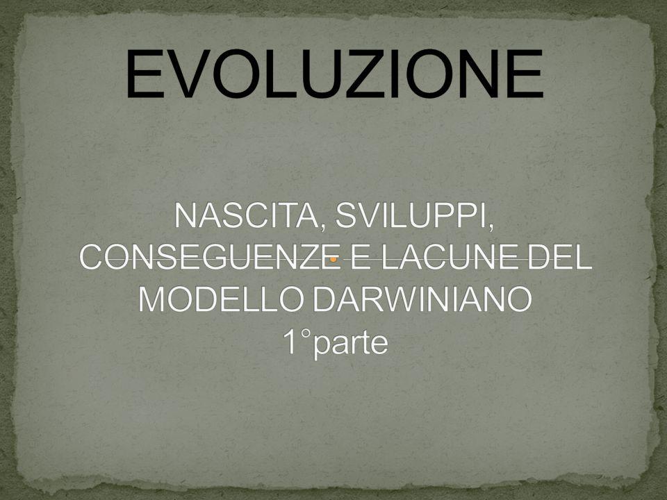 EVOLUZIONE NASCITA, SVILUPPI, CONSEGUENZE E LACUNE DEL MODELLO DARWINIANO 1°parte