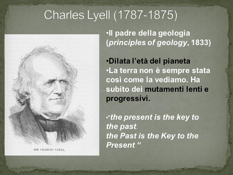 Charles Lyell (1787-1875) Il padre della geologia (principles of geology, 1833) Dilata l'età del pianeta.