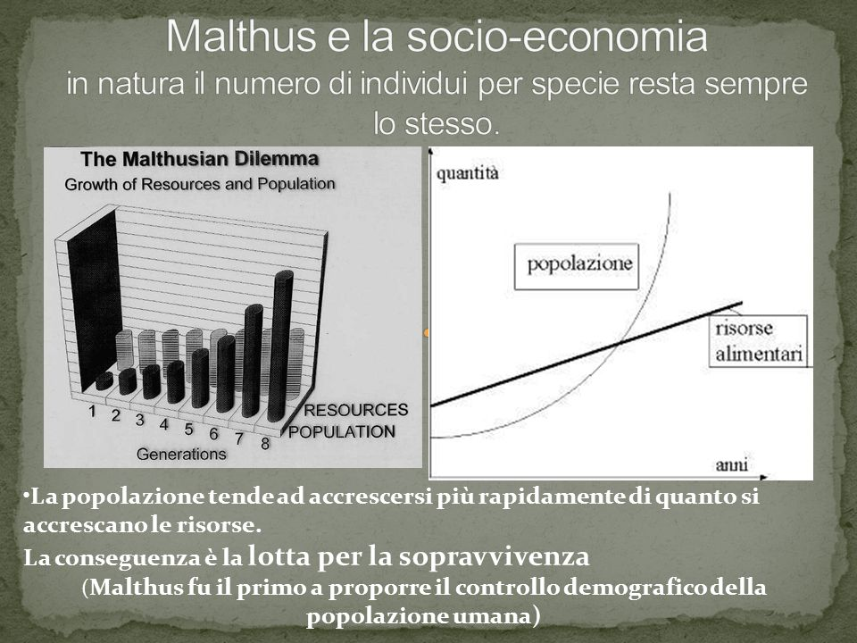 Malthus e la socio-economia in natura il numero di individui per specie resta sempre lo stesso.
