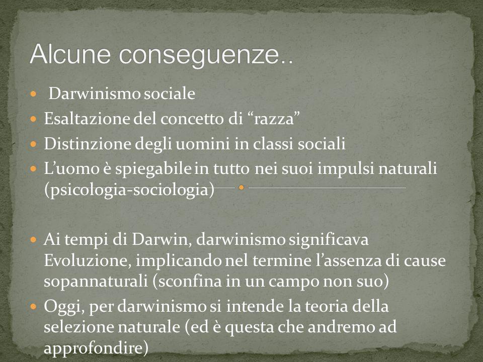 Alcune conseguenze.. Darwinismo sociale