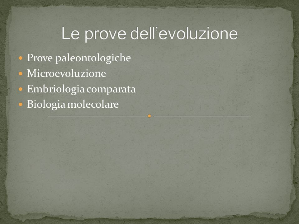 Le prove dell'evoluzione