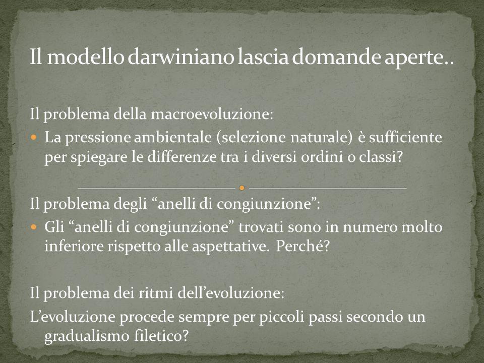 Il modello darwiniano lascia domande aperte..