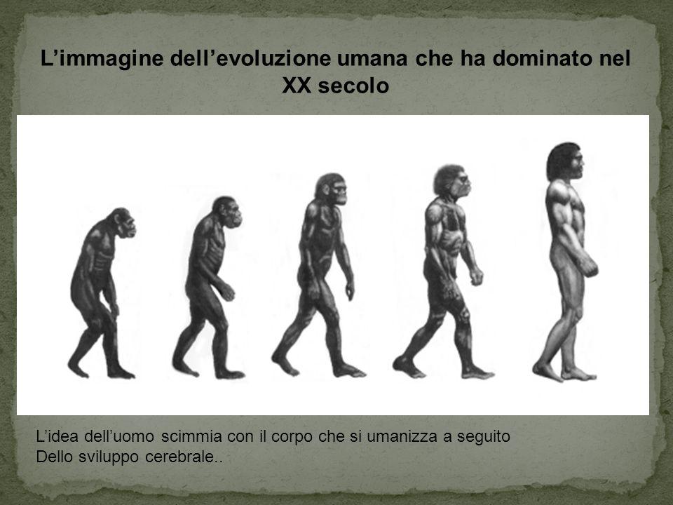 L'immagine dell'evoluzione umana che ha dominato nel XX secolo