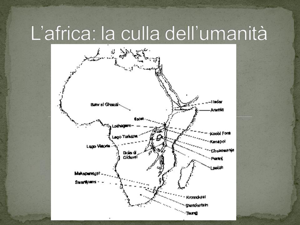 L'africa: la culla dell'umanità