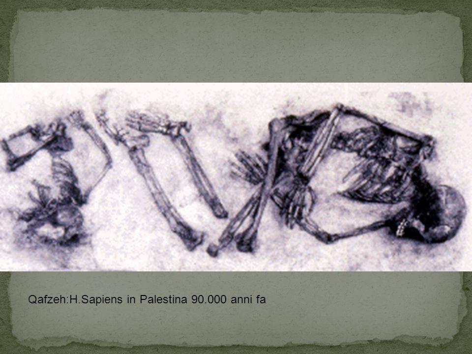 Qafzeh:H.Sapiens in Palestina 90.000 anni fa