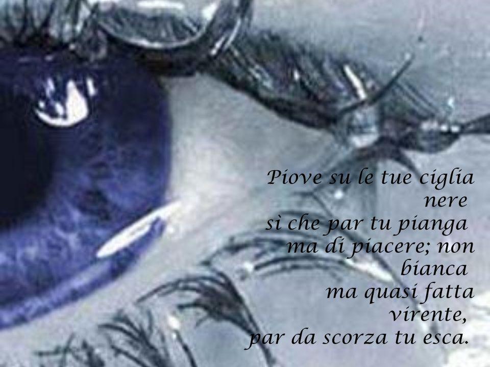 Piove su le tue ciglia nere sì che par tu pianga ma di piacere; non bianca ma quasi fatta virente, par da scorza tu esca.