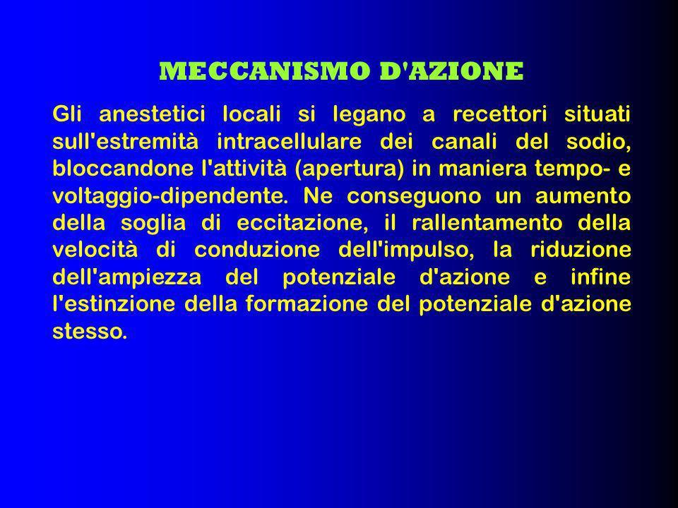 MECCANISMO D AZIONE