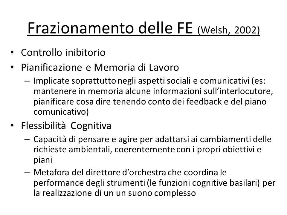 Frazionamento delle FE (Welsh, 2002)
