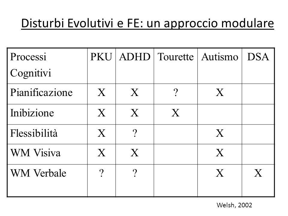 Disturbi Evolutivi e FE: un approccio modulare