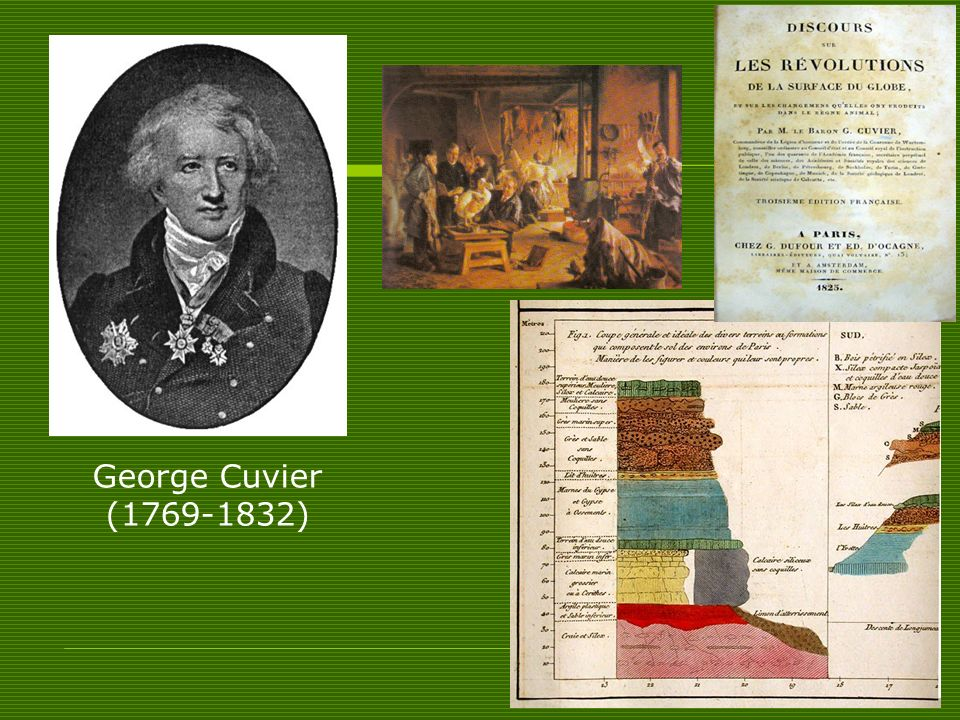 George Cuvier ( )