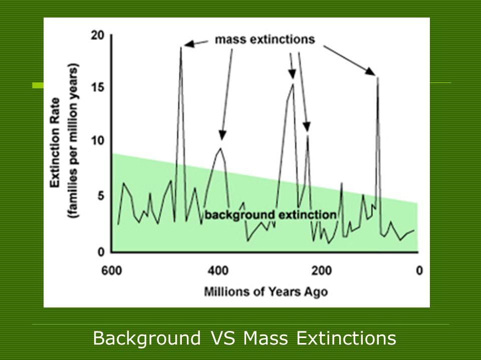 Background VS Mass Extinctions