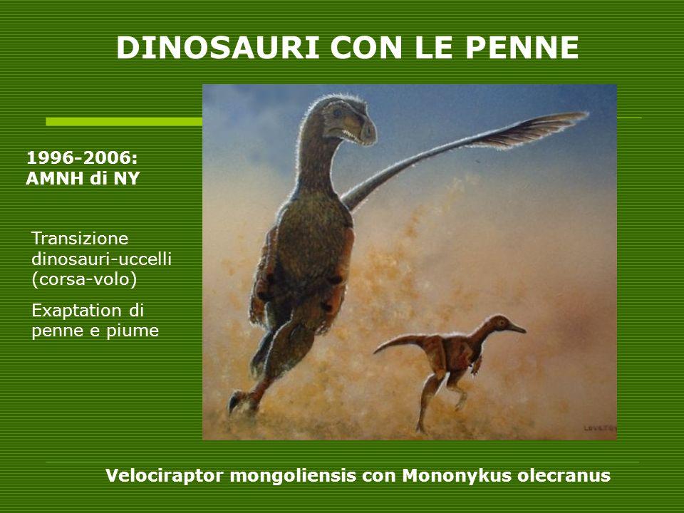 Velociraptor mongoliensis con Mononykus olecranus