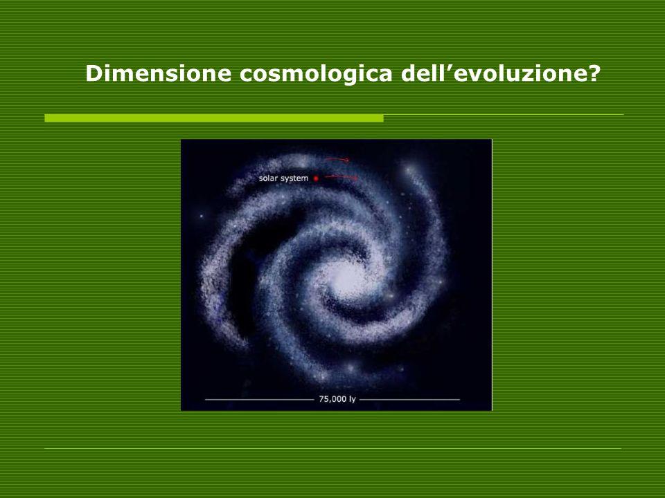Dimensione cosmologica dell'evoluzione