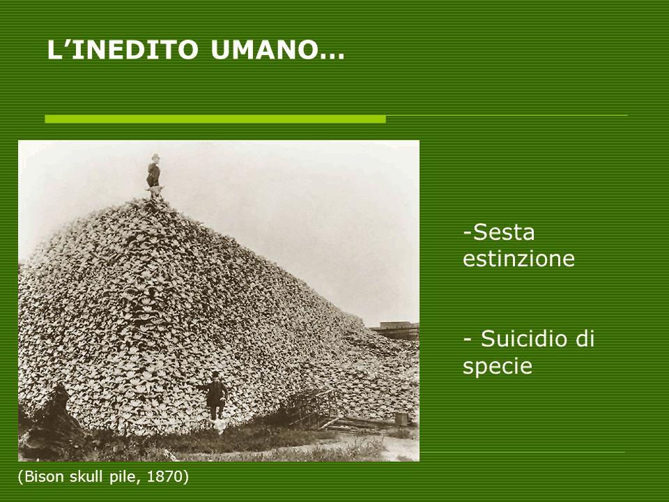 L'INEDITO UMANO… Sesta estinzione - Suicidio di specie