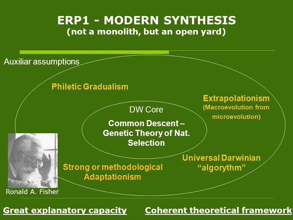 ERP1 - MODERN SYNTHESIS (not a monolith, but an open yard)