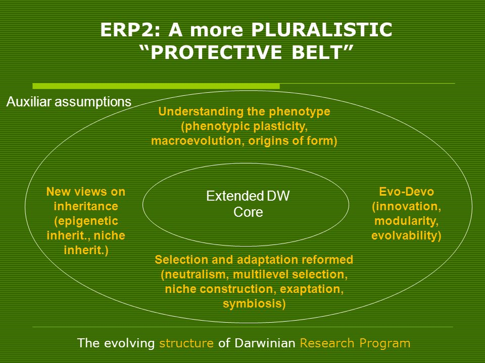 ERP2: A more PLURALISTIC PROTECTIVE BELT