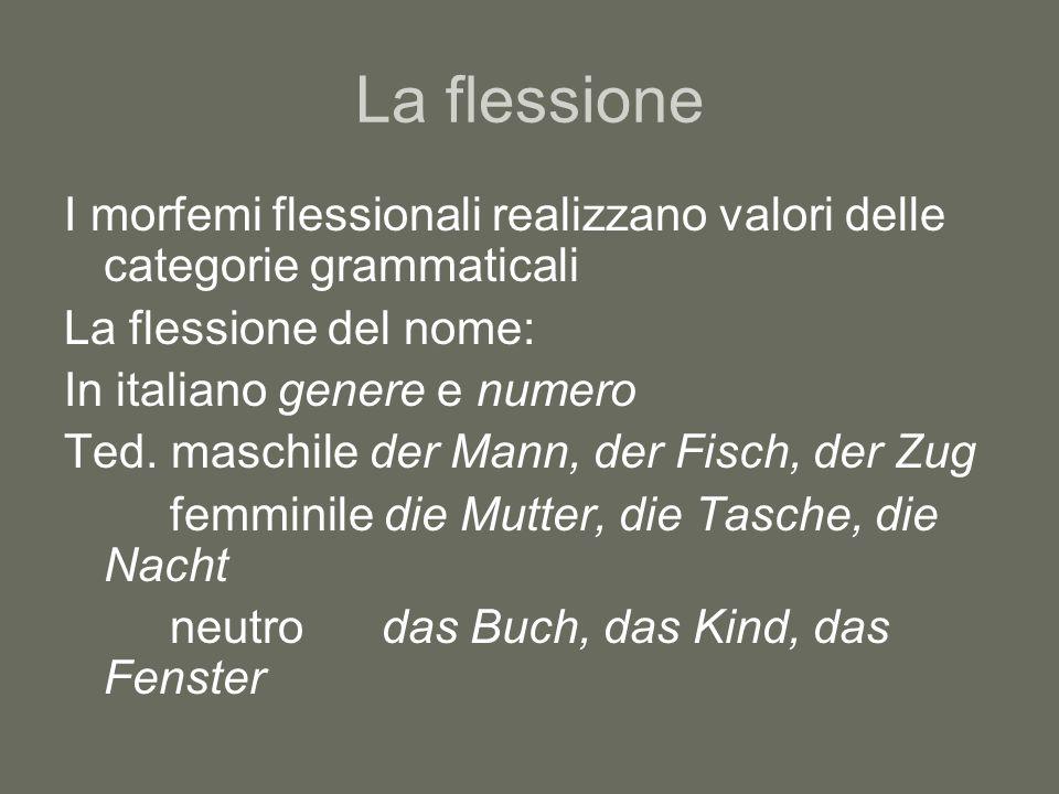 La flessione I morfemi flessionali realizzano valori delle categorie grammaticali. La flessione del nome: